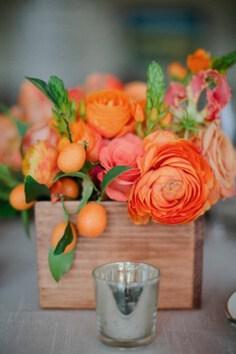 cemtro naranja