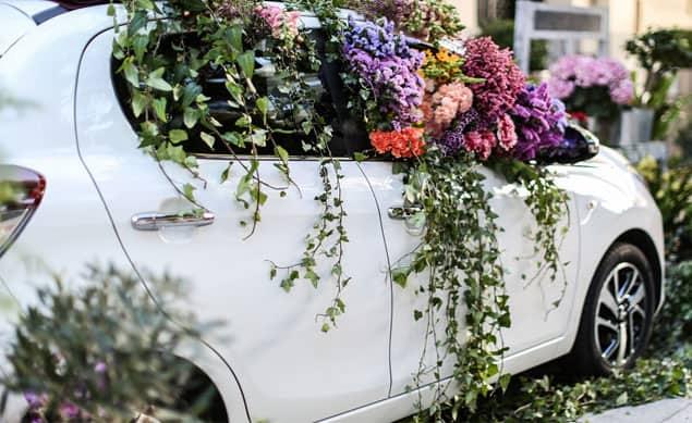 coche flores